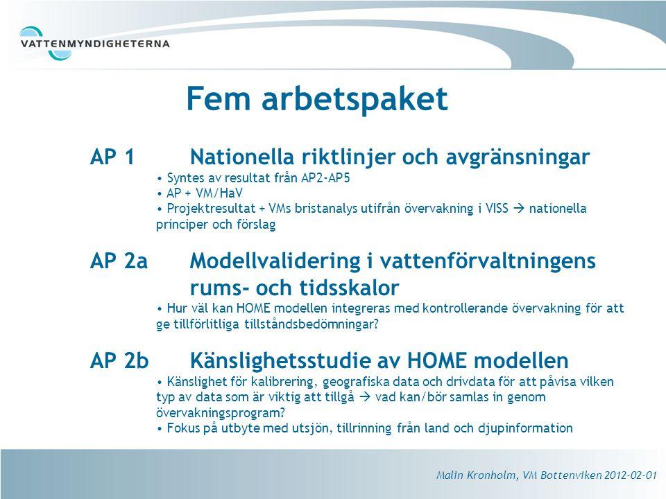 Fem arbetspaket AP 1 Nationella riktlinjer och avgränsningar