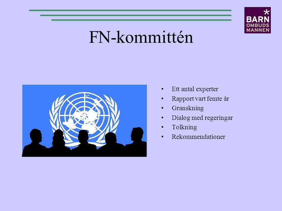 FN-kommittén Ett antal experter Rapport vart femte år Granskning