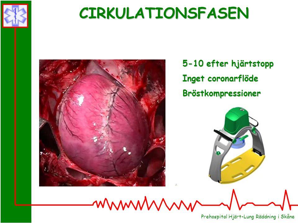 CIRKULATIONSFASEN 5-10 efter hjärtstopp Inget coronarflöde