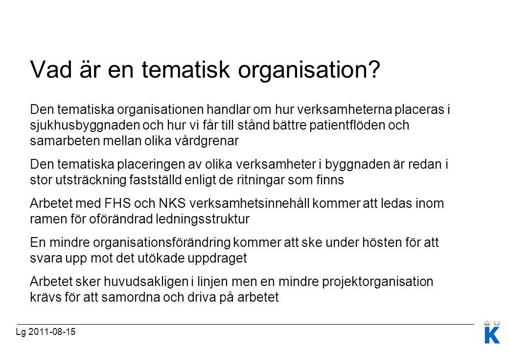 Vad är en tematisk organisation
