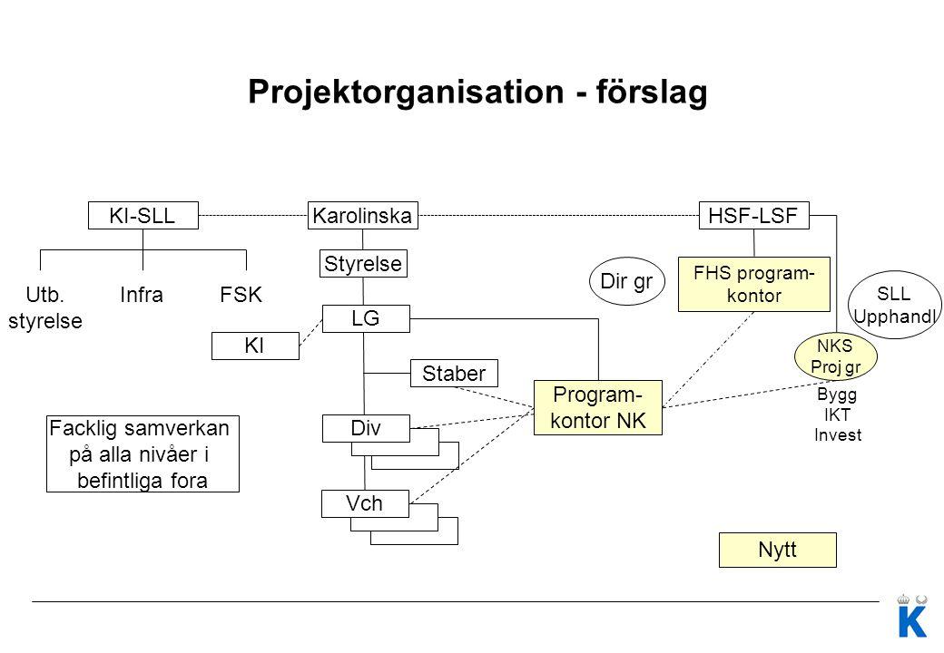Projektorganisation - förslag