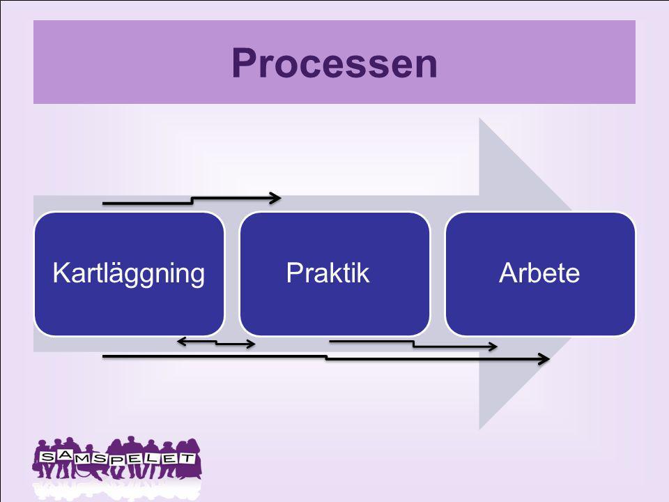 Processen Kartläggning Praktik Arbete