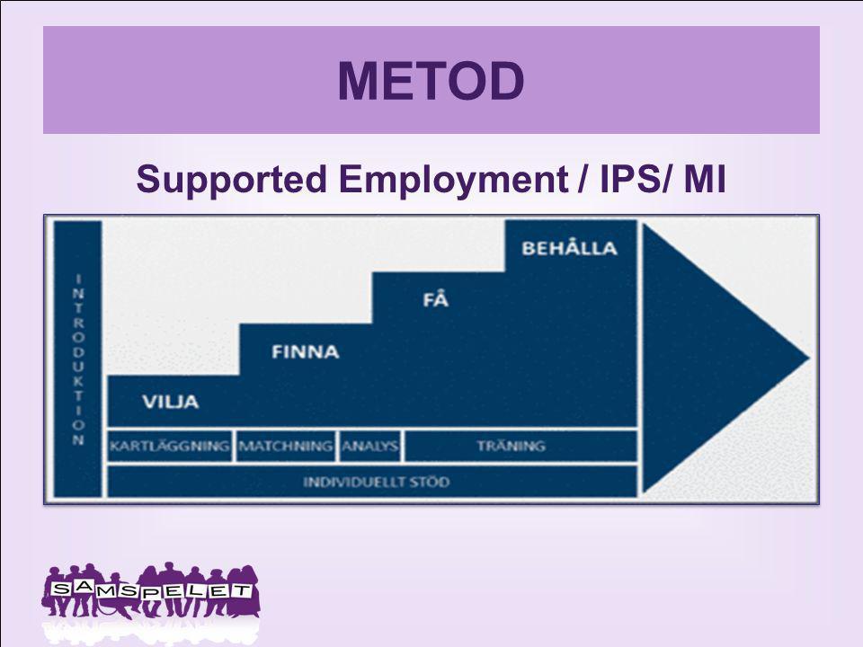 Supported Employment / IPS/ MI
