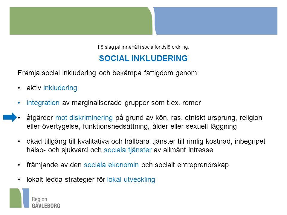 Förslag på innehåll i socialfondsförordning: SOCIAL INKLUDERING