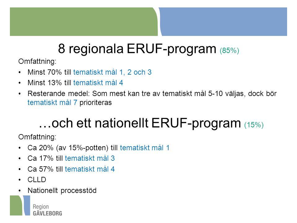 8 regionala ERUF-program (85%)