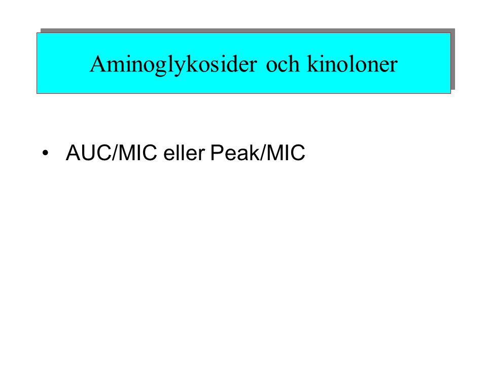 Aminoglykosider och kinoloner