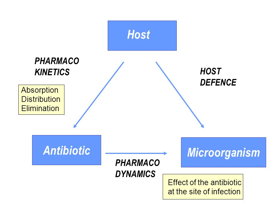 Antibiotic Microorganism