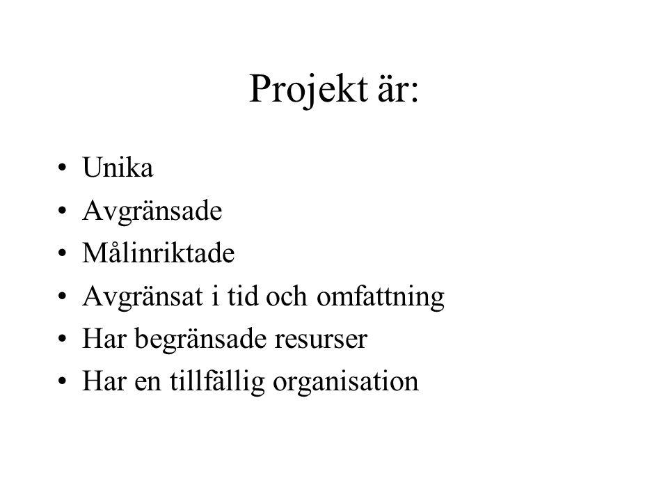Projekt är: Unika Avgränsade Målinriktade