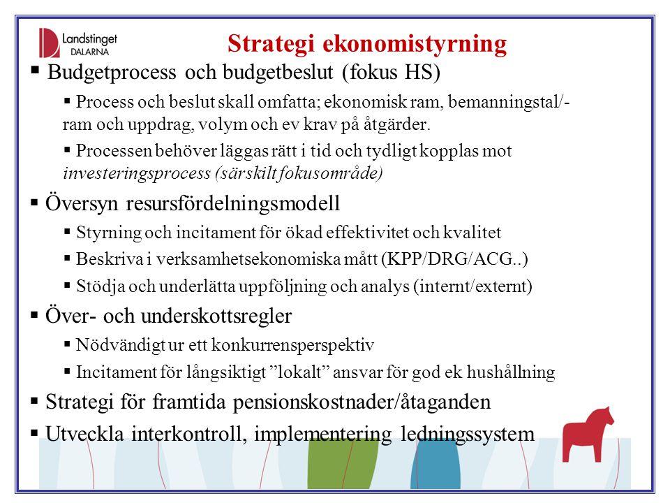 Strategi ekonomistyrning