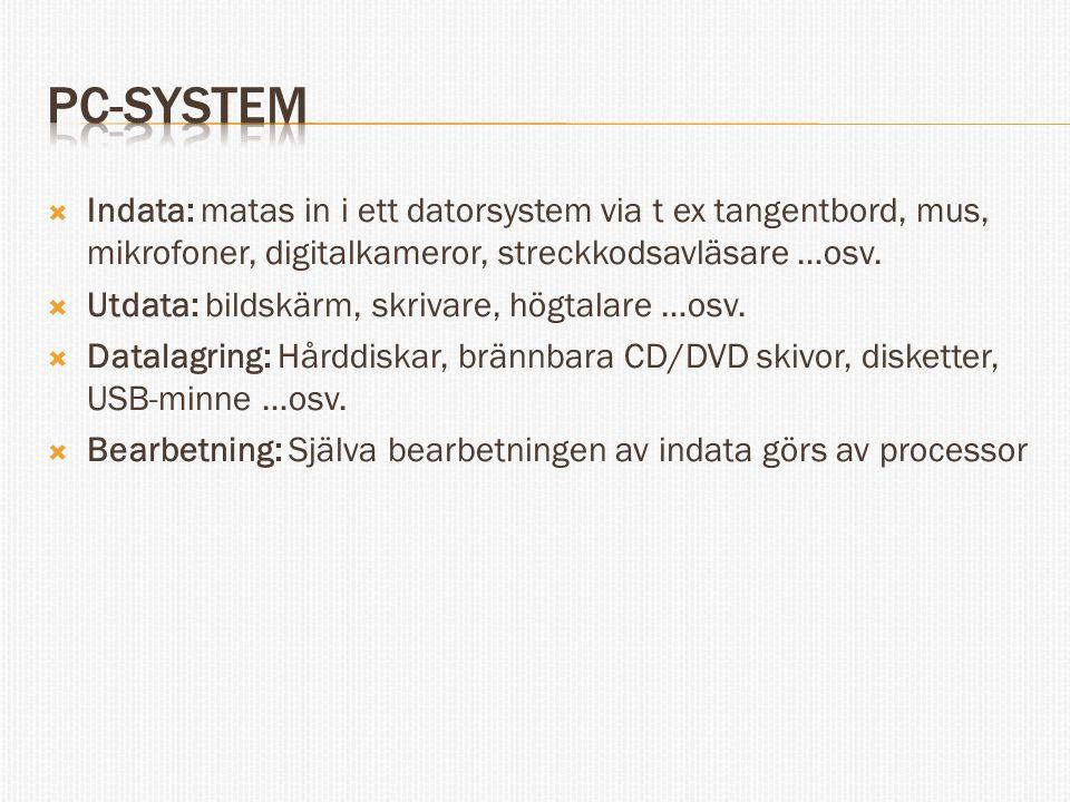 PC-system Indata: matas in i ett datorsystem via t ex tangentbord, mus, mikrofoner, digitalkameror, streckkodsavläsare …osv.