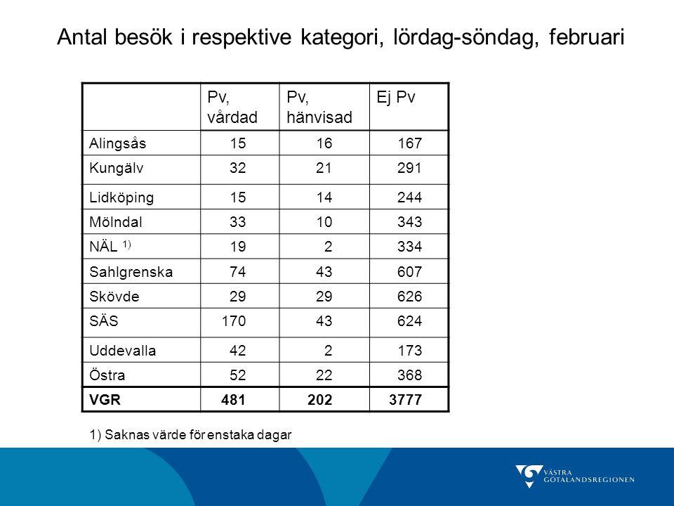 Antal besök i respektive kategori, lördag-söndag, februari