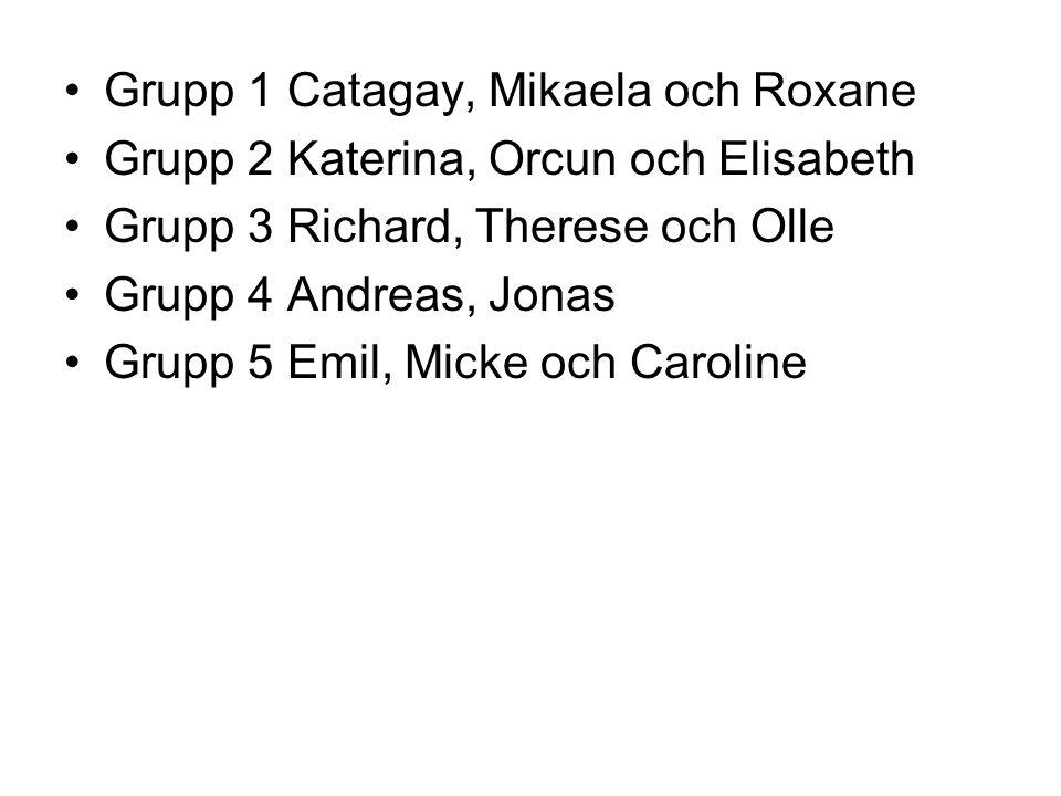 Grupp 1 Catagay, Mikaela och Roxane