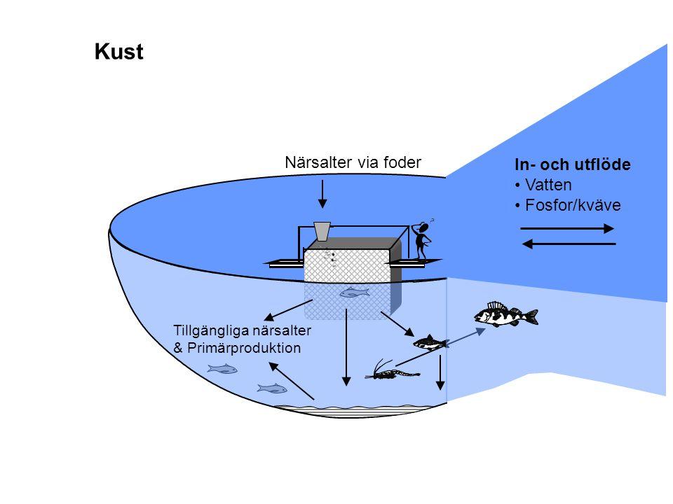 Kust Närsalter via foder In- och utflöde Vatten Fosfor/kväve