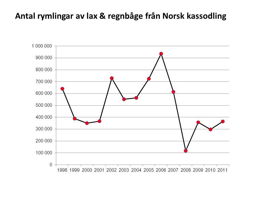 Antal rymlingar av lax & regnbåge från Norsk kassodling