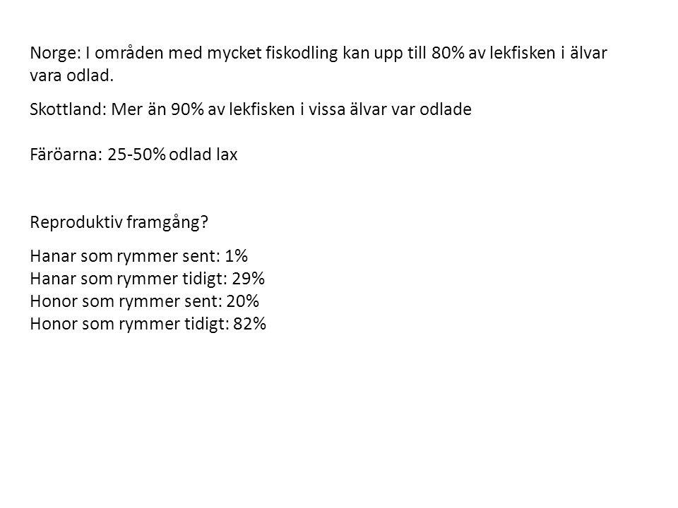 Norge: I områden med mycket fiskodling kan upp till 80% av lekfisken i älvar vara odlad.