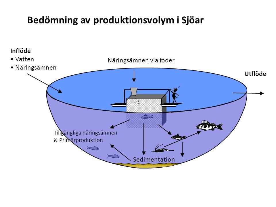 Bedömning av produktionsvolym i Sjöar