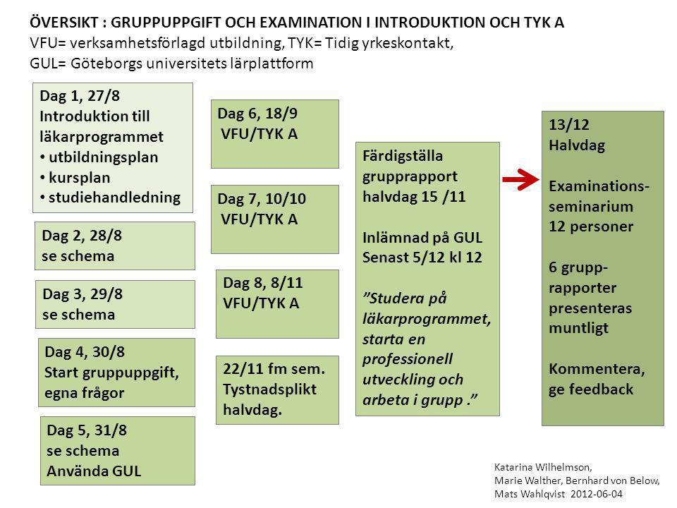 ÖVERSIKT : GRUPPUPPGIFT OCH EXAMINATION I INTRODUKTION OCH TYK A