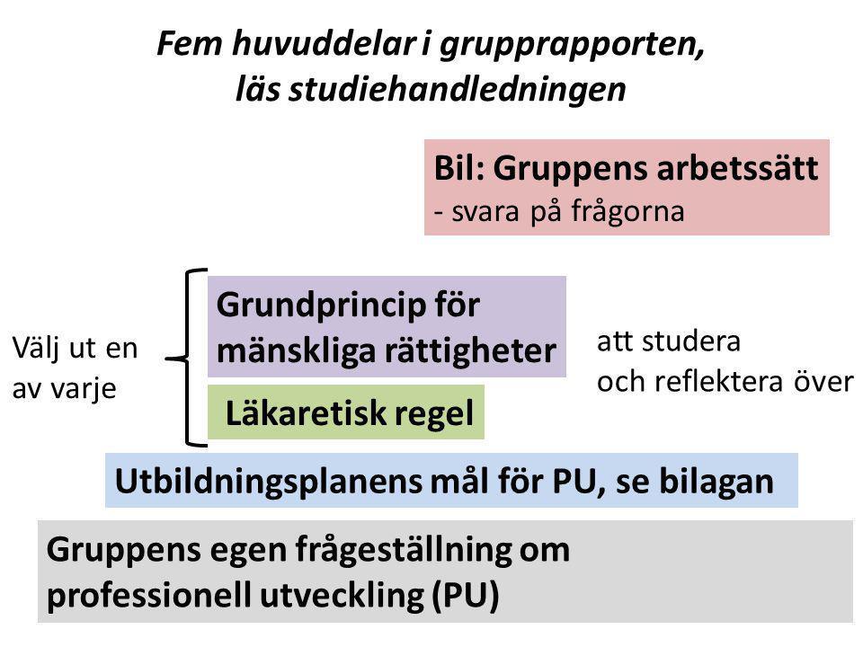 Fem huvuddelar i grupprapporten, läs studiehandledningen