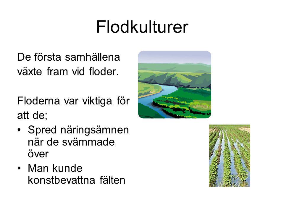 Flodkulturer De första samhällena växte fram vid floder.