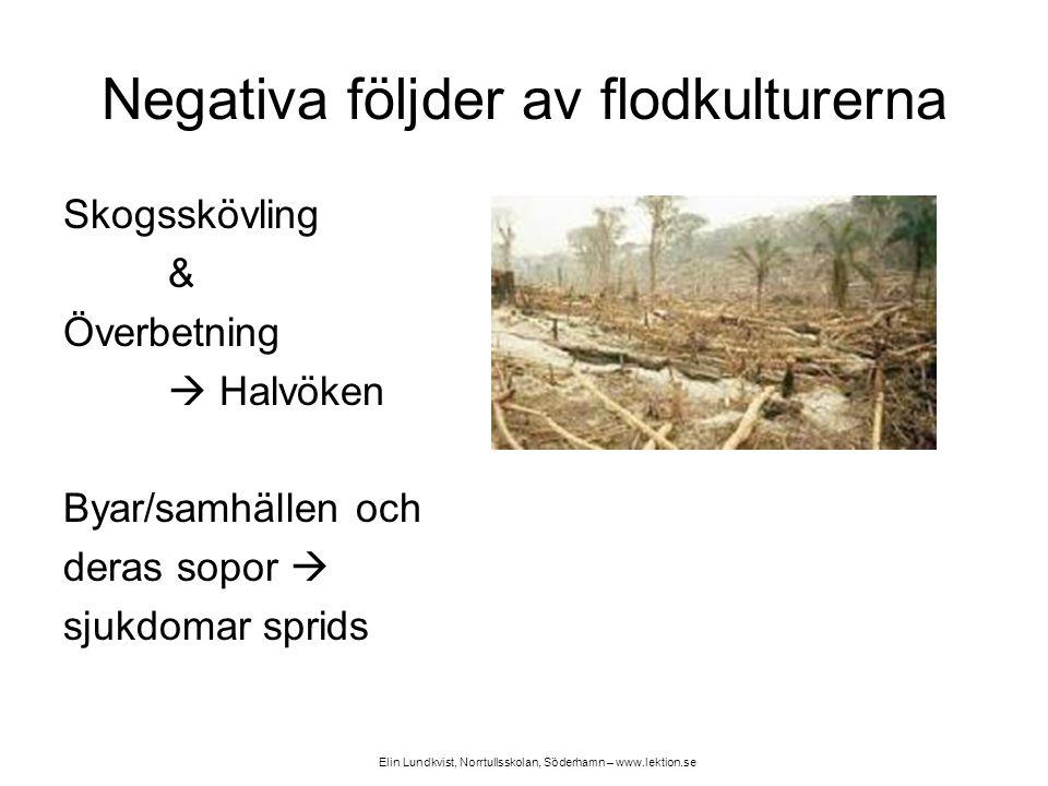 Negativa följder av flodkulturerna