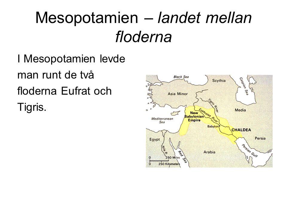 Mesopotamien – landet mellan floderna