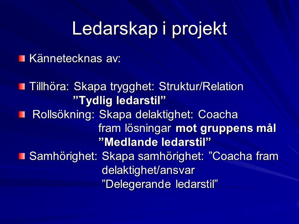 Ledarskap i projekt Kännetecknas av: