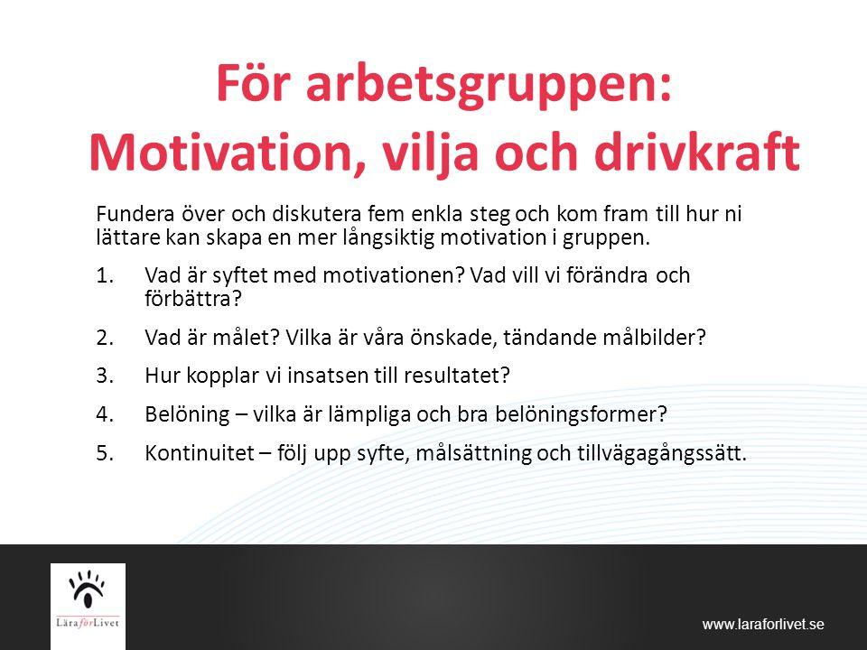 För arbetsgruppen: Motivation, vilja och drivkraft