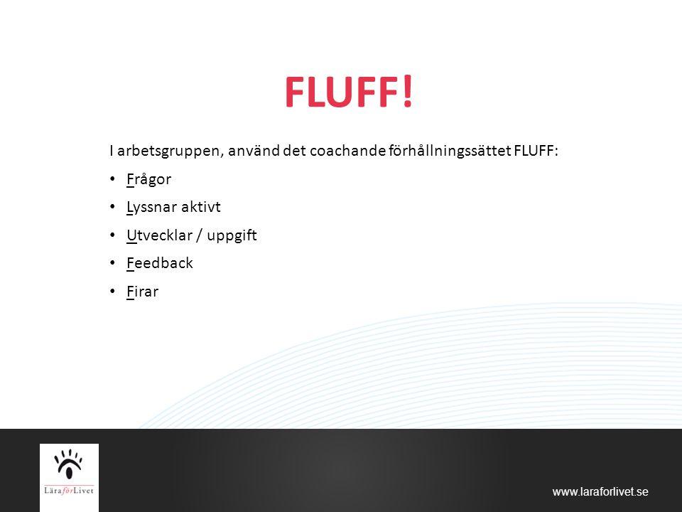 FLUFF! I arbetsgruppen, använd det coachande förhållningssättet FLUFF: