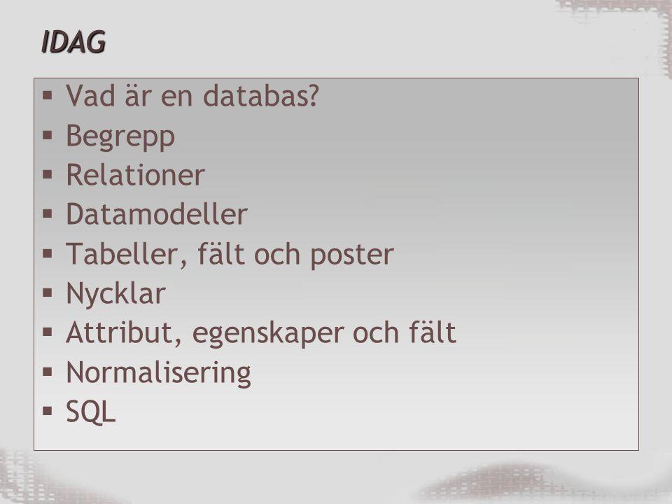IDAG Vad är en databas Begrepp. Relationer. Datamodeller. Tabeller, fält och poster. Nycklar.