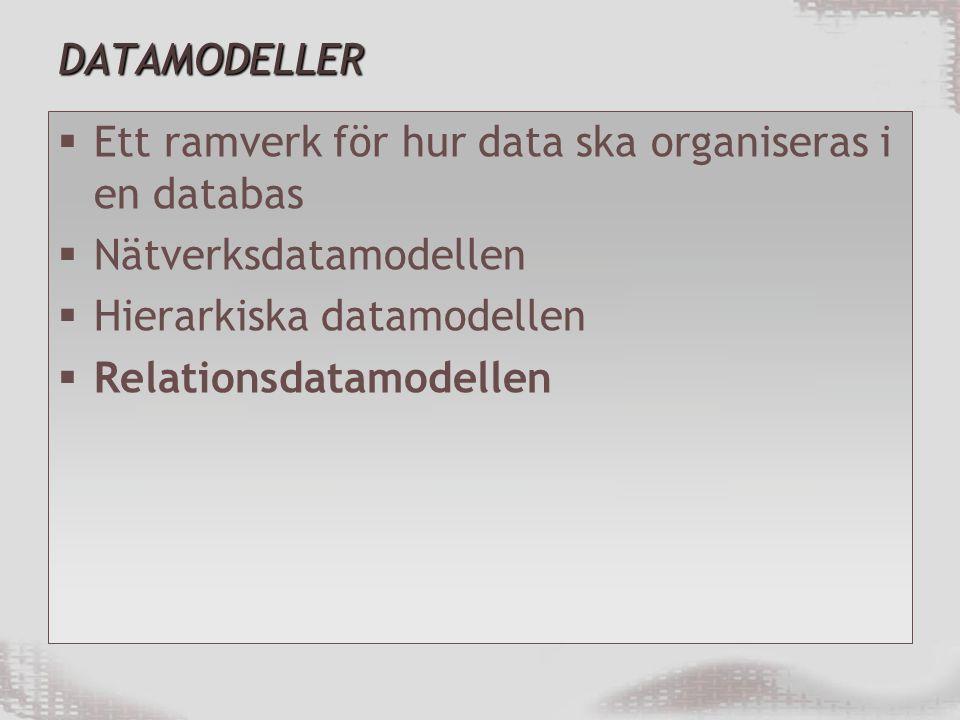 DATAMODELLER Ett ramverk för hur data ska organiseras i en databas. Nätverksdatamodellen. Hierarkiska datamodellen.