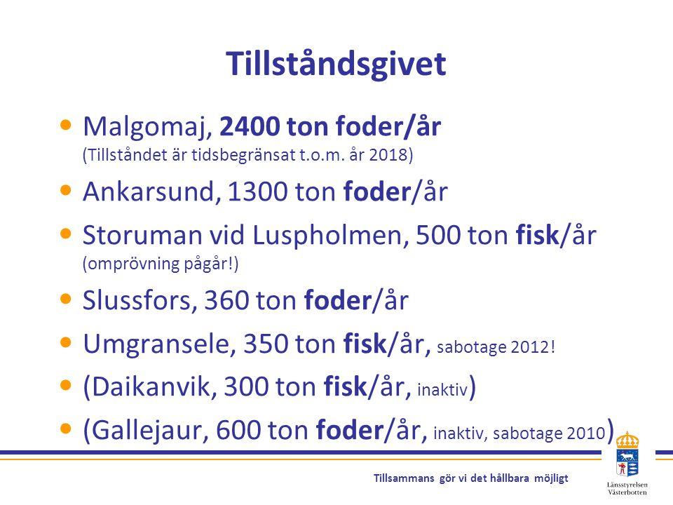Tillståndsgivet Malgomaj, 2400 ton foder/år (Tillståndet är tidsbegränsat t.o.m. år 2018) Ankarsund, 1300 ton foder/år.