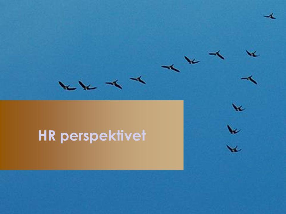 HR perspektivet