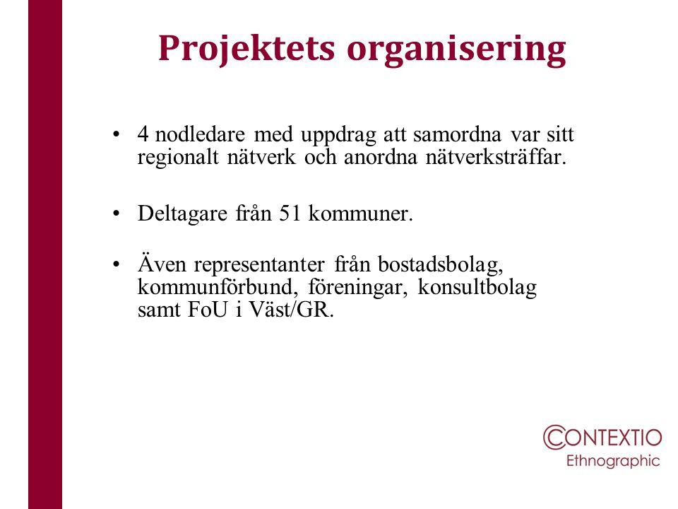 Projektets organisering