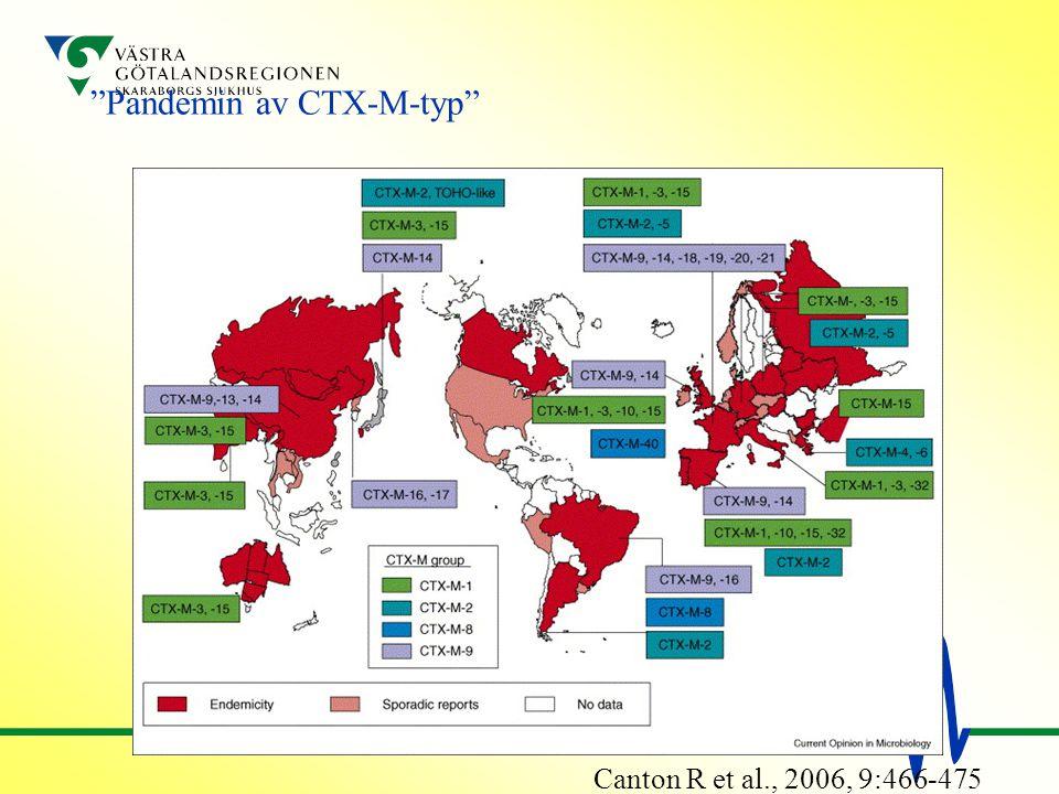Pandemin av CTX-M-typ