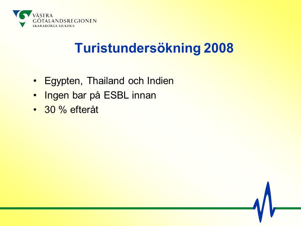 Turistundersökning 2008 Egypten, Thailand och Indien