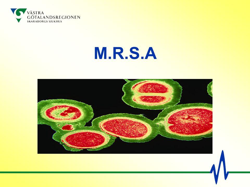 M.R.S.A