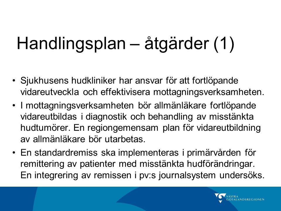 Handlingsplan – åtgärder (1)
