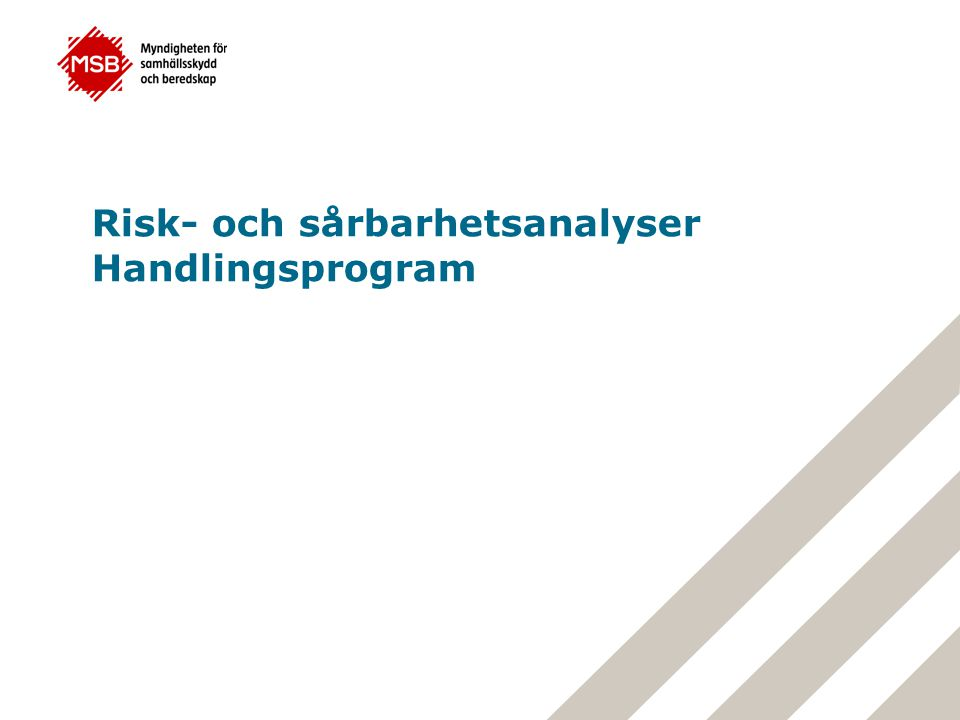 Risk- och sårbarhetsanalyser Handlingsprogram