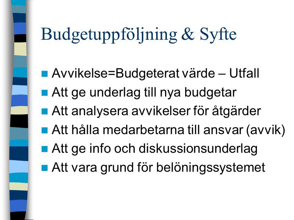 Budgetuppföljning & Syfte