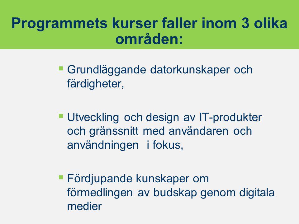 Programmets kurser faller inom 3 olika områden: