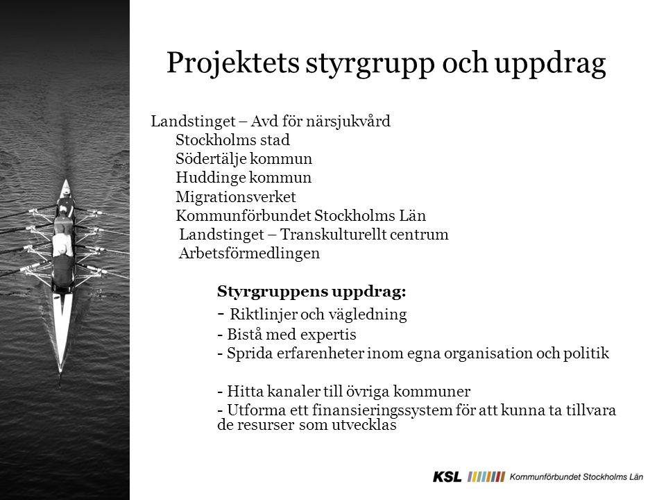 Projektets styrgrupp och uppdrag