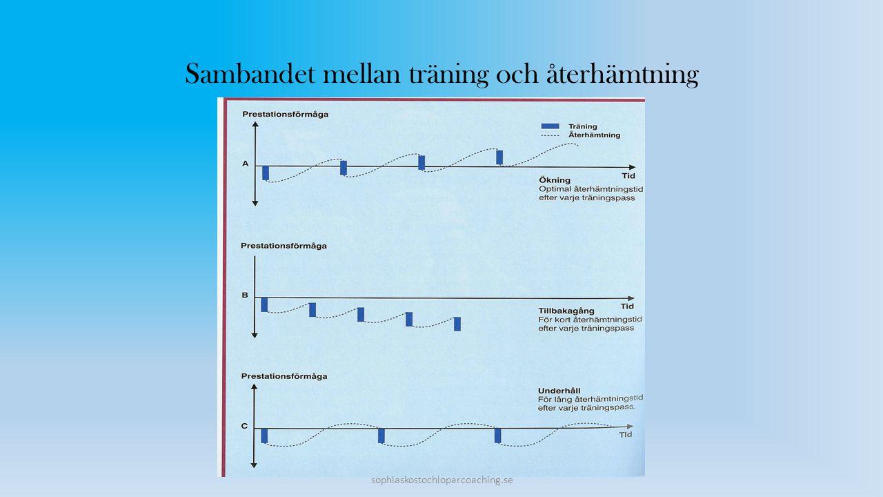 Sambandet mellan träning och återhämtning