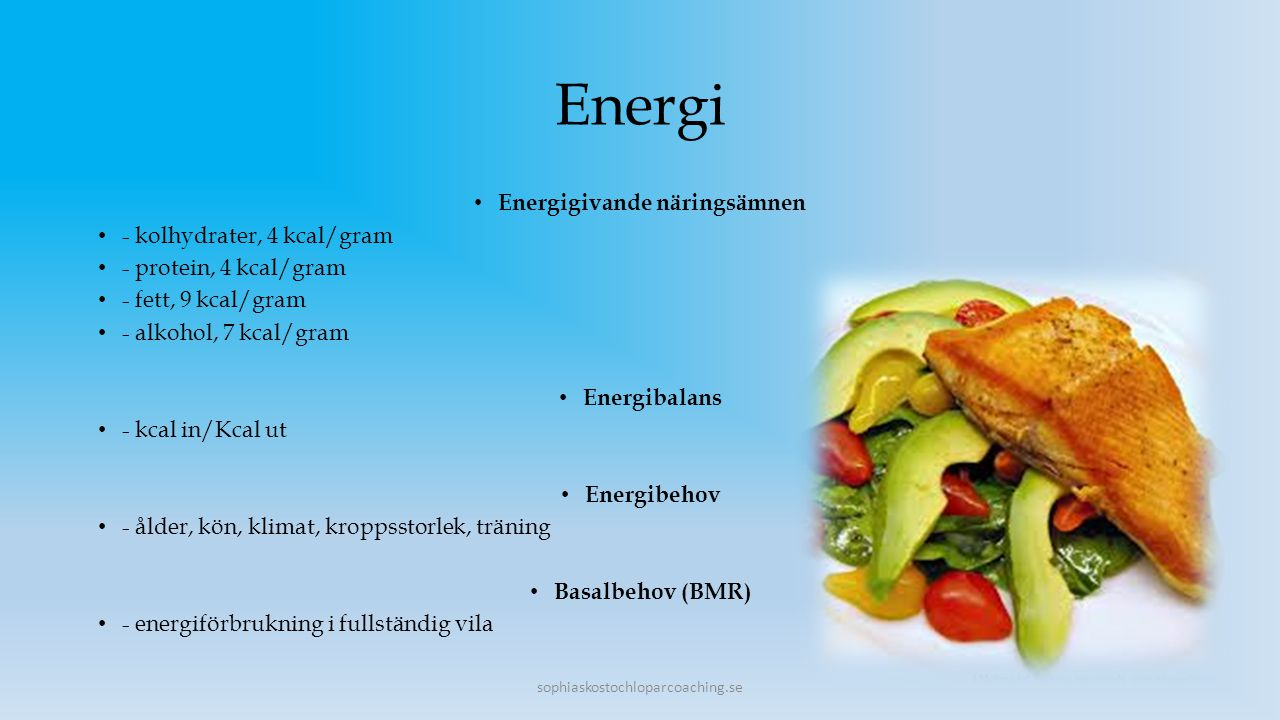 Energigivande näringsämnen