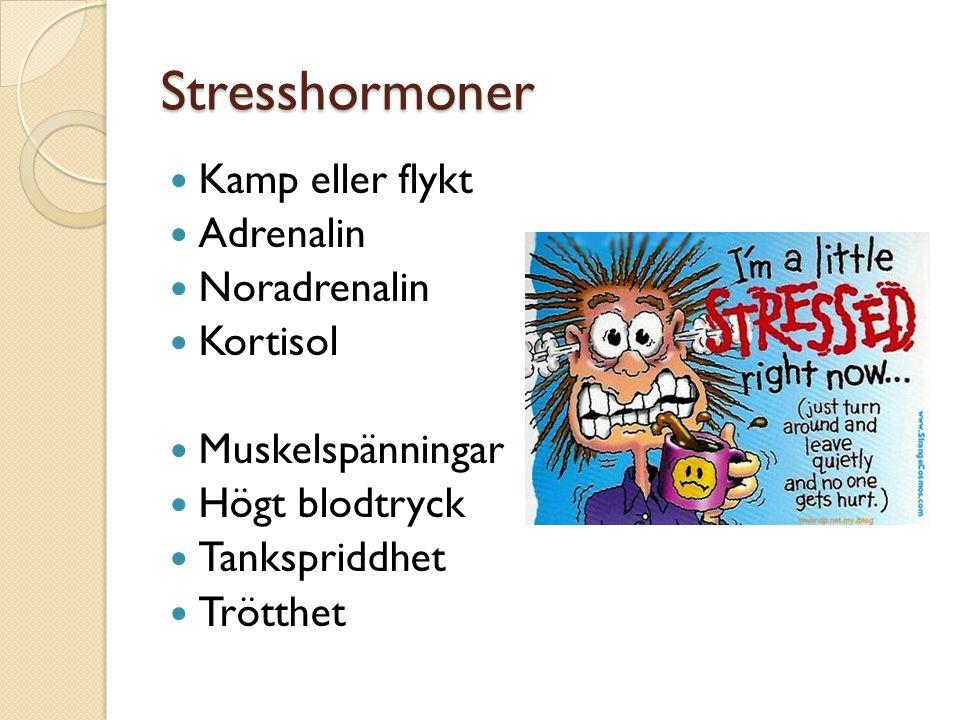 Stresshormoner Kamp eller flykt Adrenalin Noradrenalin Kortisol