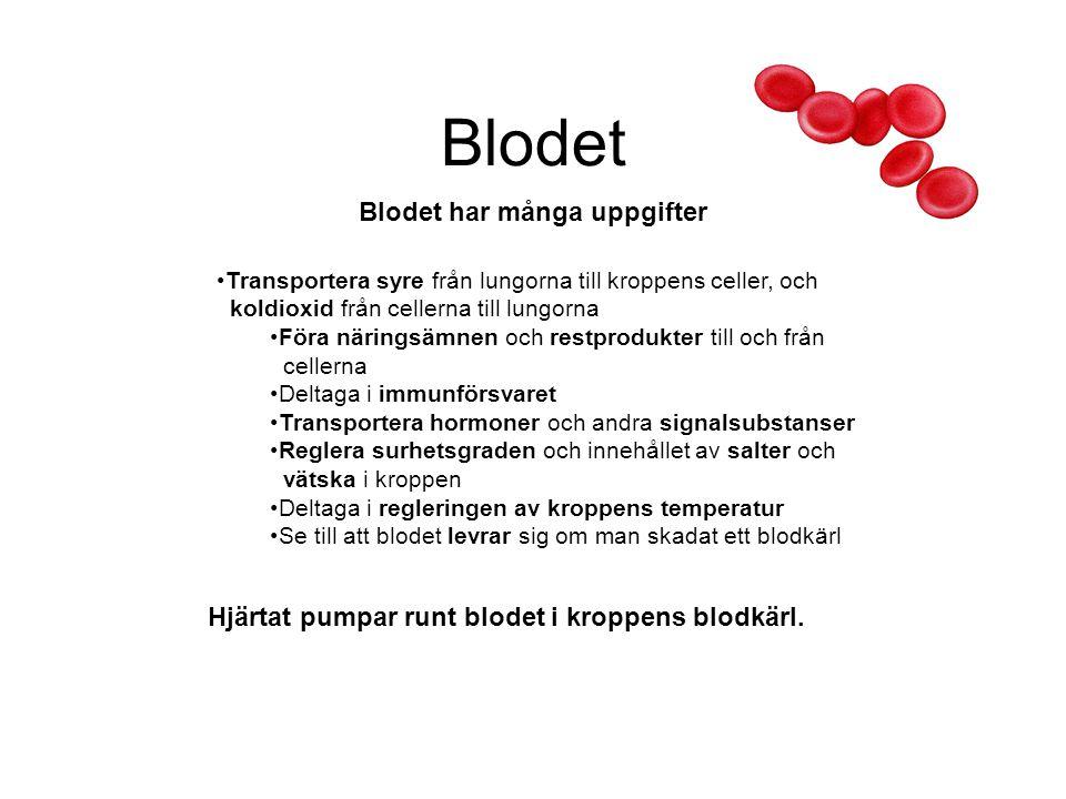 Blodet Blodet har många uppgifter