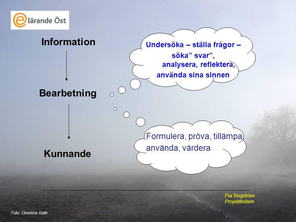 Undersöka – ställa frågor – söka svar , analysera, reflektera,