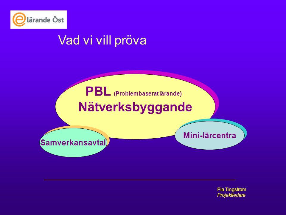 PBL (Problembaserat lärande)