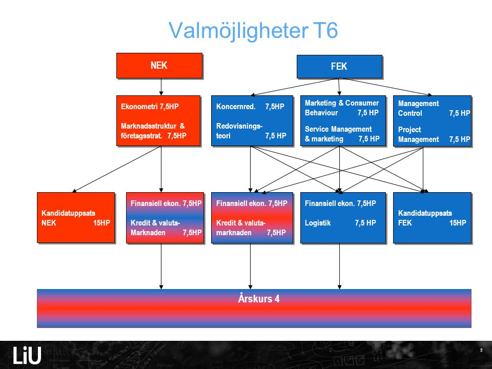Valmöjligheter T6 Årskurs 4 NEK FEK Marketing & Consumer