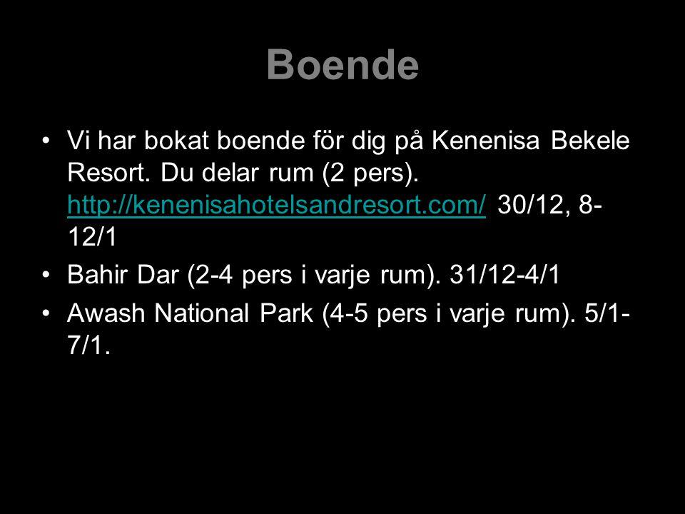 Boende Vi har bokat boende för dig på Kenenisa Bekele Resort. Du delar rum (2 pers). http://kenenisahotelsandresort.com/ 30/12, 8-12/1.