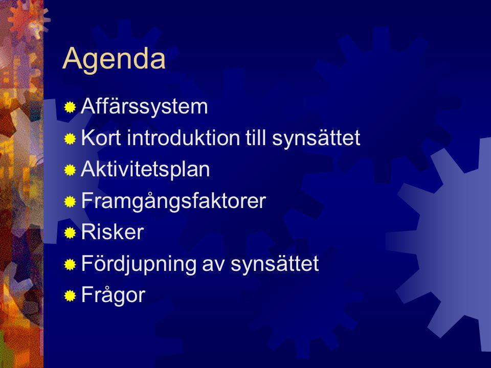 Agenda Affärssystem Kort introduktion till synsättet Aktivitetsplan